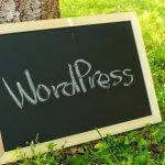 【WordPress】リスト内で改行する方法【ソース修正不要】【簡単】